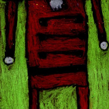 Nutcracker: Oil Pastel on Black Paper