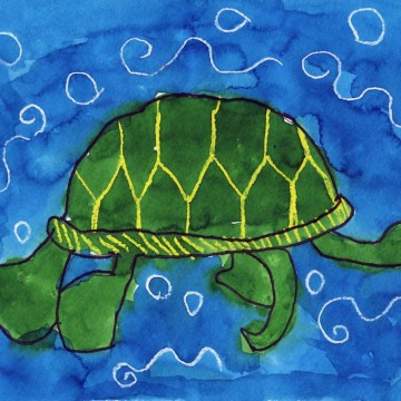 Ryan's Sea Turtle