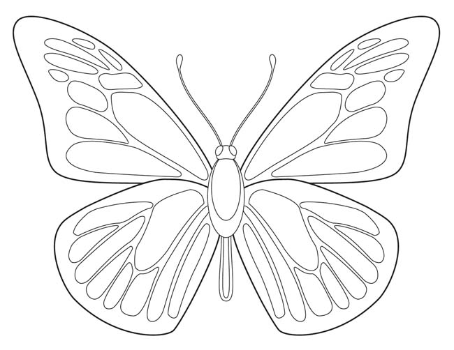 Free butterfly download art projects for kids for Butterfly template pdf