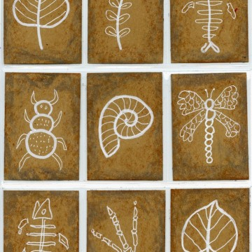 Fossil Art Trading Cards