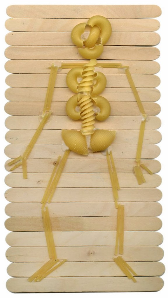 how to make a 3d skeleton for school project