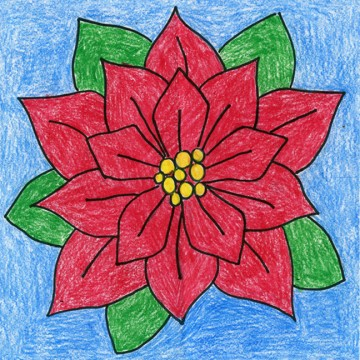 Draw a Poinsettia