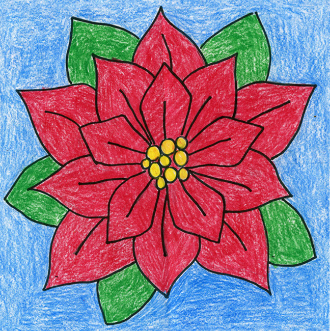 Gallery For gt Poinsettia Drawing