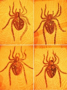 http://artprojectsforkids.org/wp-content/uploads/2014/07/Yellow-Orange-spiders-764x1024-223x300.jpg