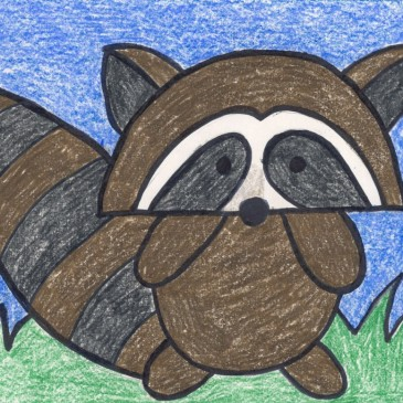 Draw a Cartoon Raccoon