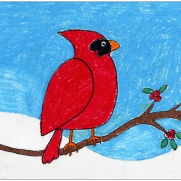 Draw a Winter Cardinal
