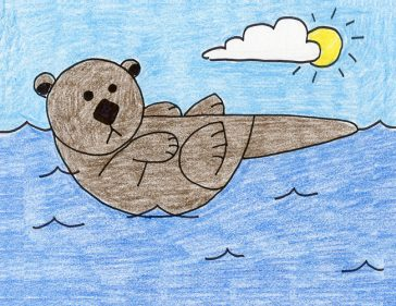 Draw a Sea Otter