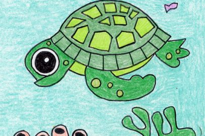 Draw a Cute Sea Turtle