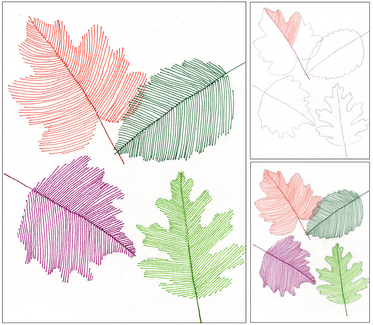 Line Art For Kids : Transparent line art leaves projects for kids