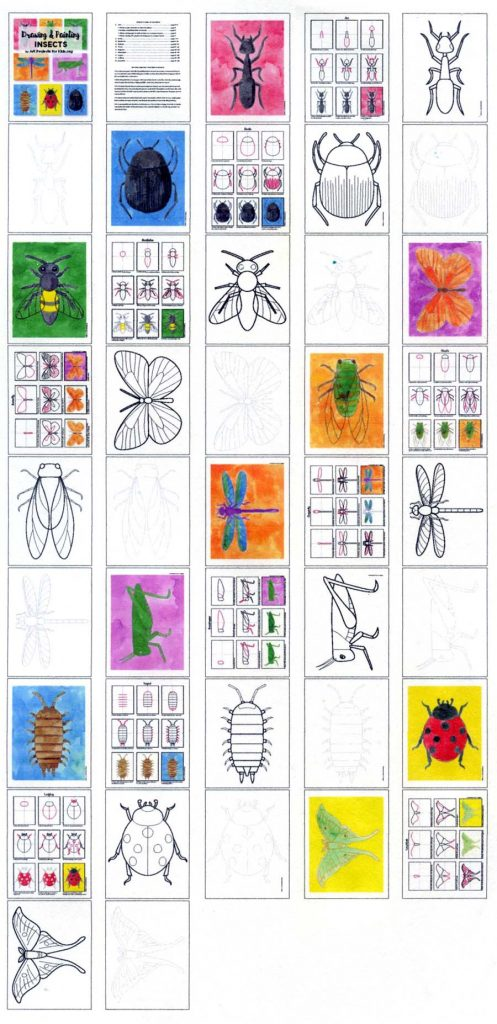 insect drawing pagination