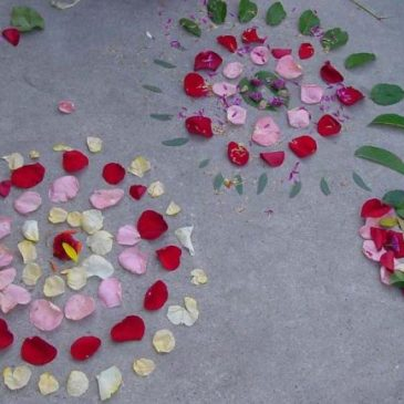 Andy Goldsworthy Flower Art