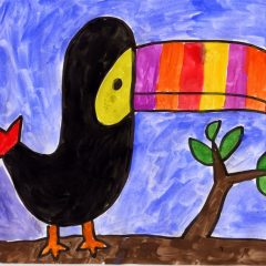 toucan bird drawing