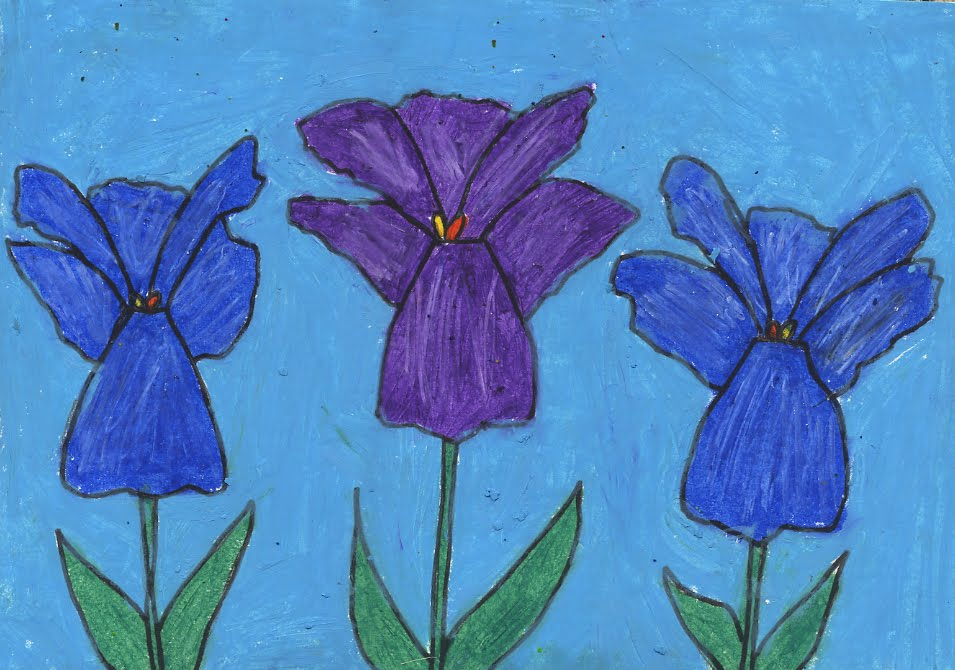 mo  pastel iris drawing   art projects for kids