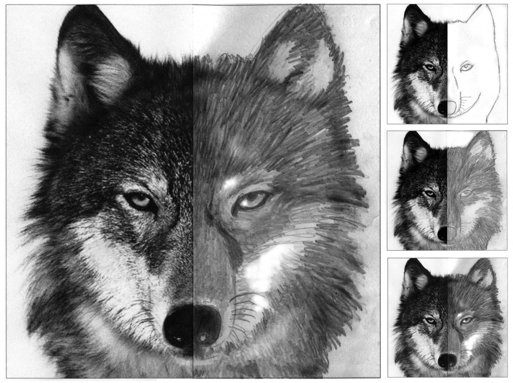 Wolf Face Drawing Art Projects For Kids