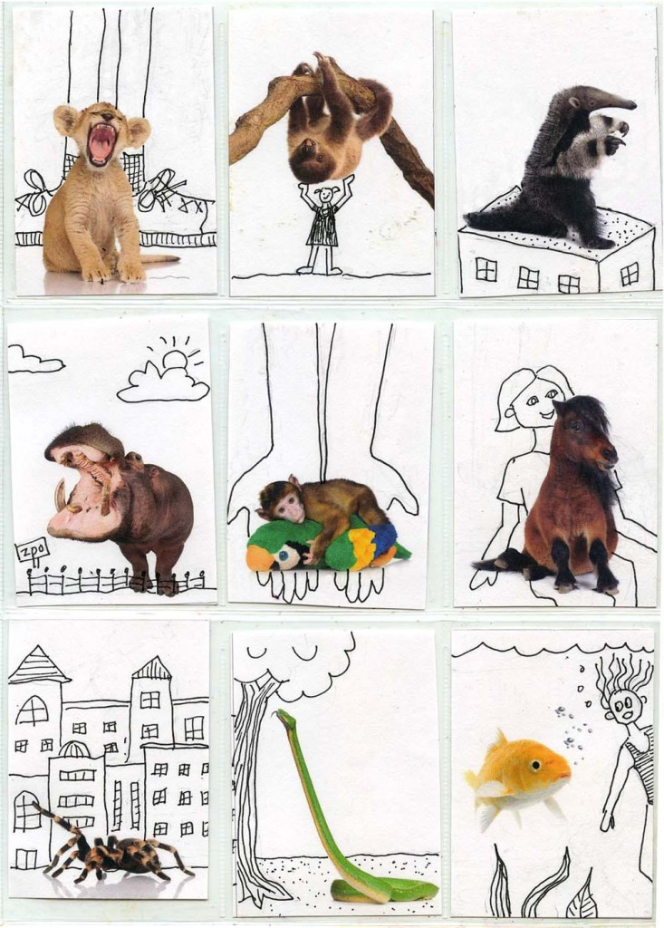 Fun With Animals Atc Template Art Projects For Kids