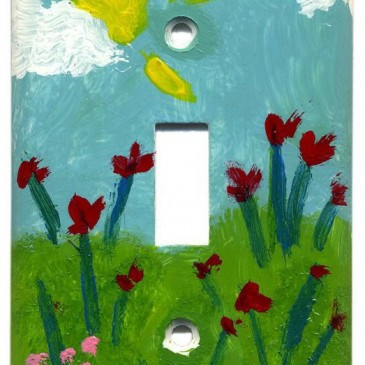Painted Light Switch Plates