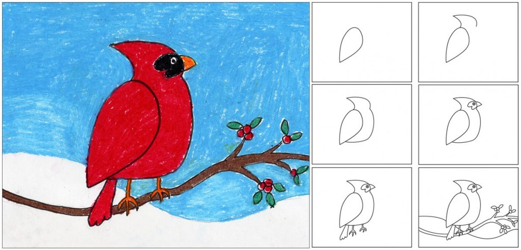 draw a simple cardinal   art projects for kids