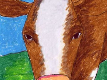 Cow Face Drawing