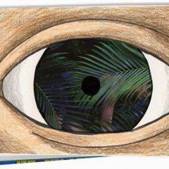magritte for kids
