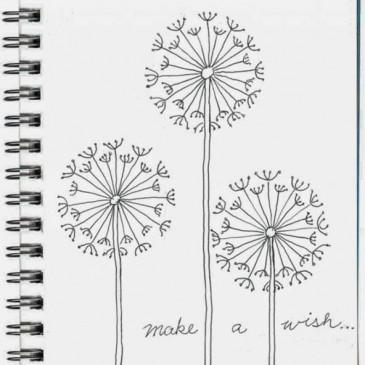Draw a Dandelion