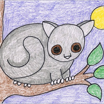 how to draw a bushbaby