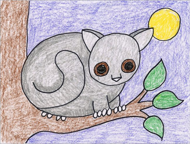 How To Draw A Bushbaby Art Projects For Kids