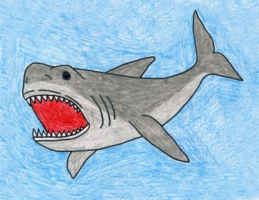 drawing megalodon