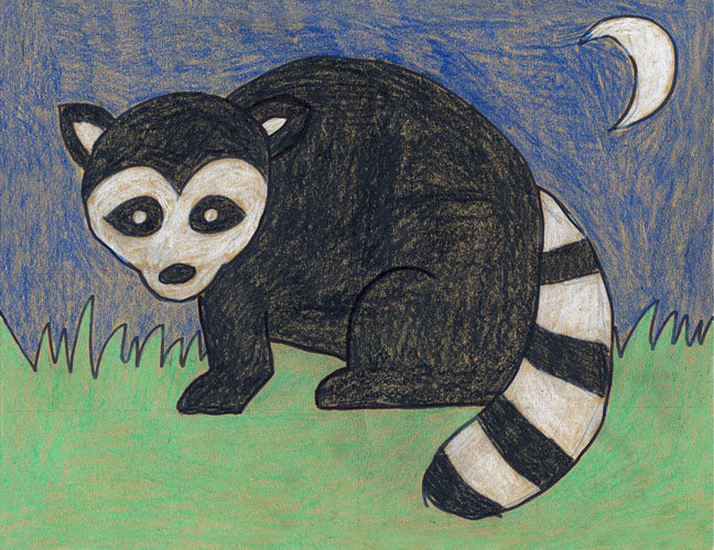 draw a raccoon