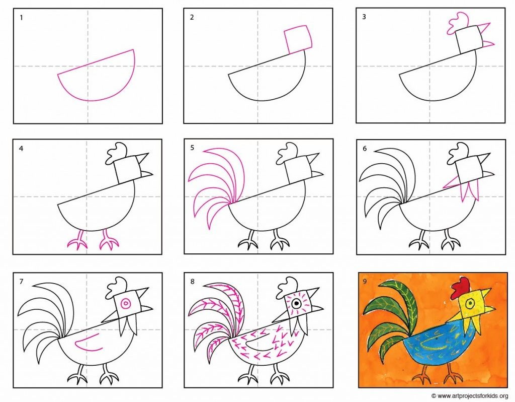 step by step rooster drawing