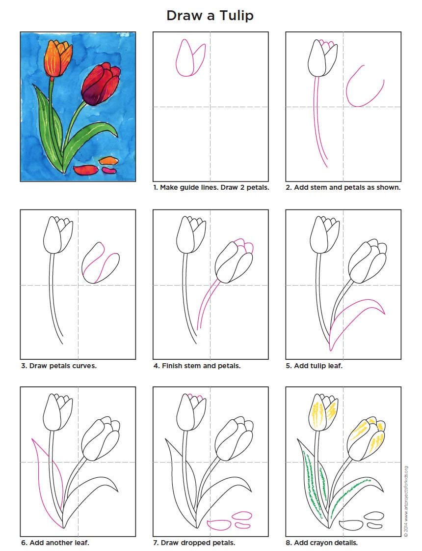 one of my most popular pins this how to draw a tulip tutorial shows just how easy it is to do its also a great example of a wet on wet watercolor