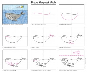 whale drawing easy