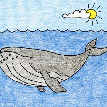 how to draw a humpback