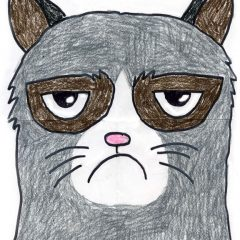 How to draw Grumpy Cat