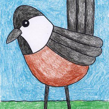 how to draw a chickadee