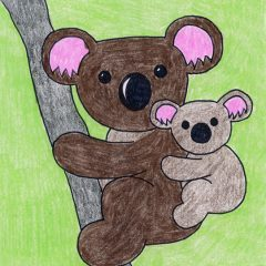 koala bear drawing