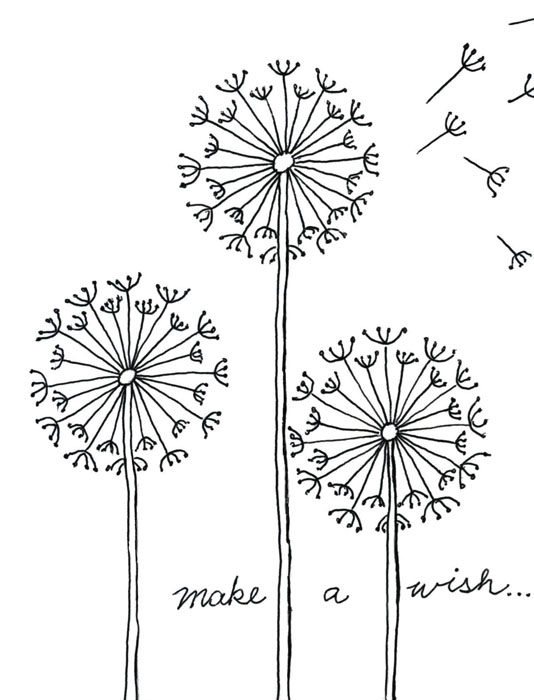 draw a dandelion  u00b7 art projects for kids