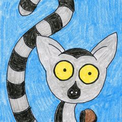 how to draw a lemur