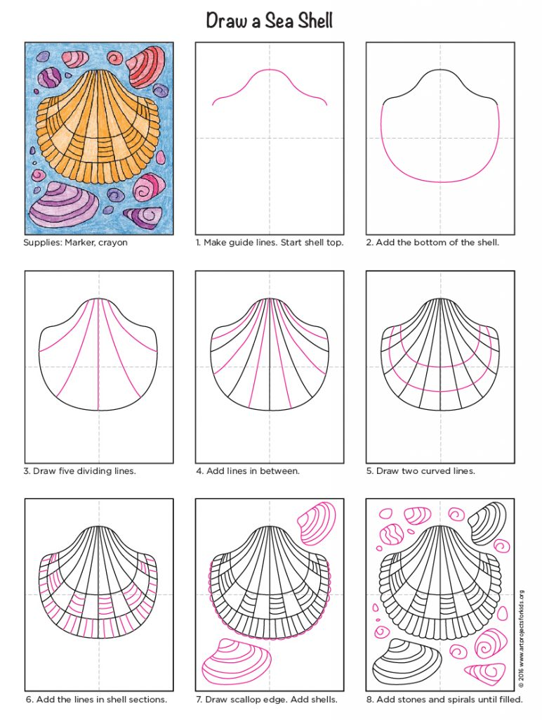how to draw sea shells