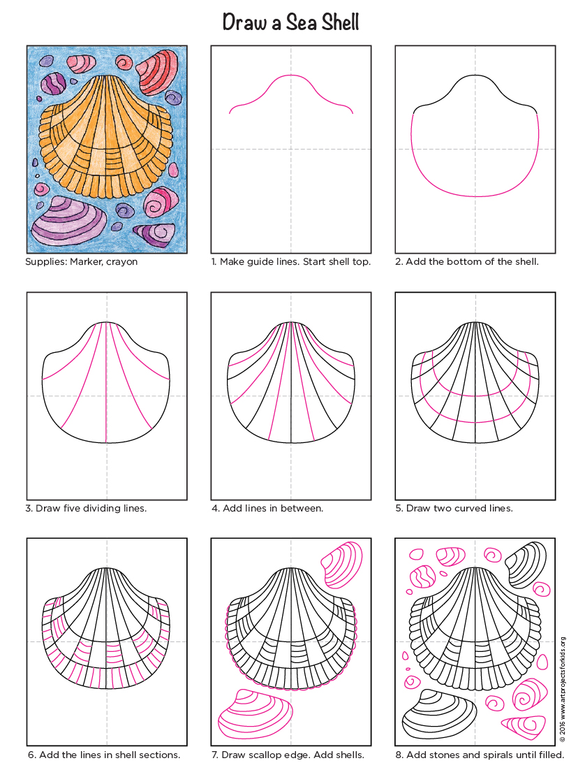 How To Draw A Sea Shell Art Projects For Kids