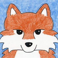 fox face drawing