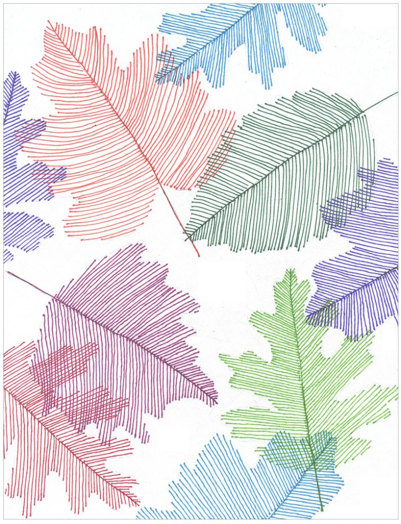 Line Drawing Photo : Transparent line art leaves · projects for kids