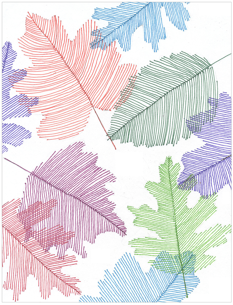 Line Design Art Project : Transparent line art leaves projects for kids