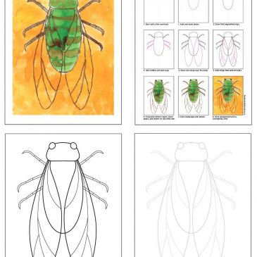 Preview my Insect eBook