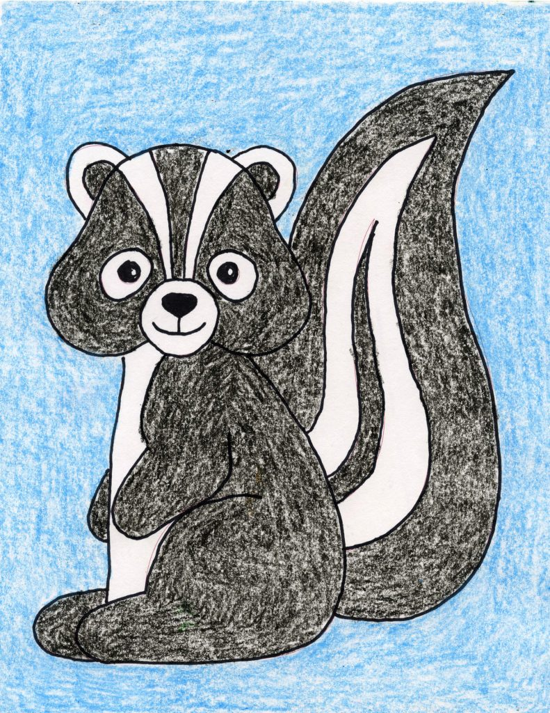 skunk drawing