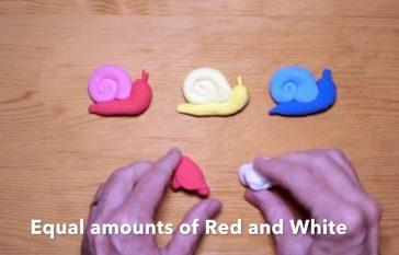 Model Magic Snail Video