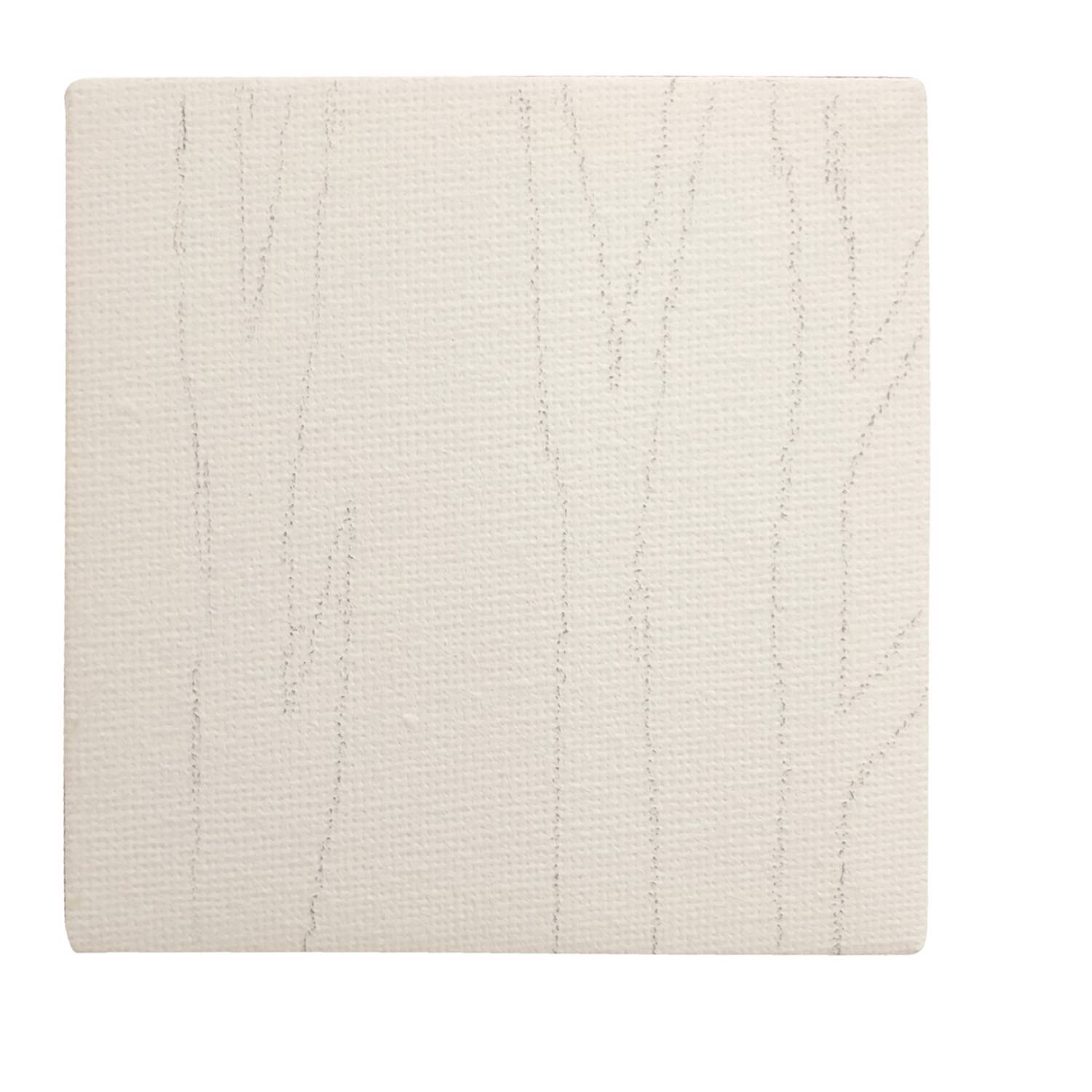 Drawing Lines Using Canvas : Birch tree paintings on canvas · art projects for kids