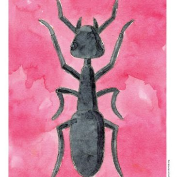 Ant Drawing and Painting