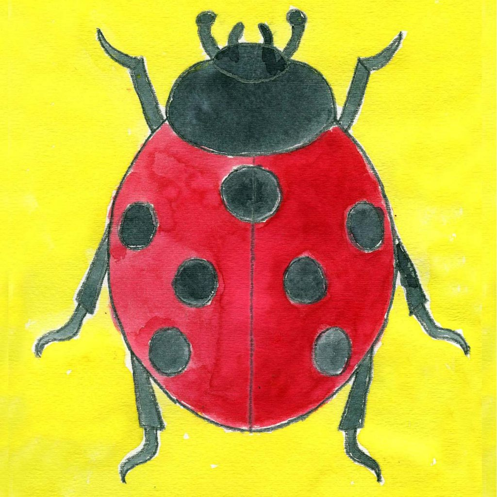 Adorable red wings and black spots of ladybug coloring page ... | 1024x1024