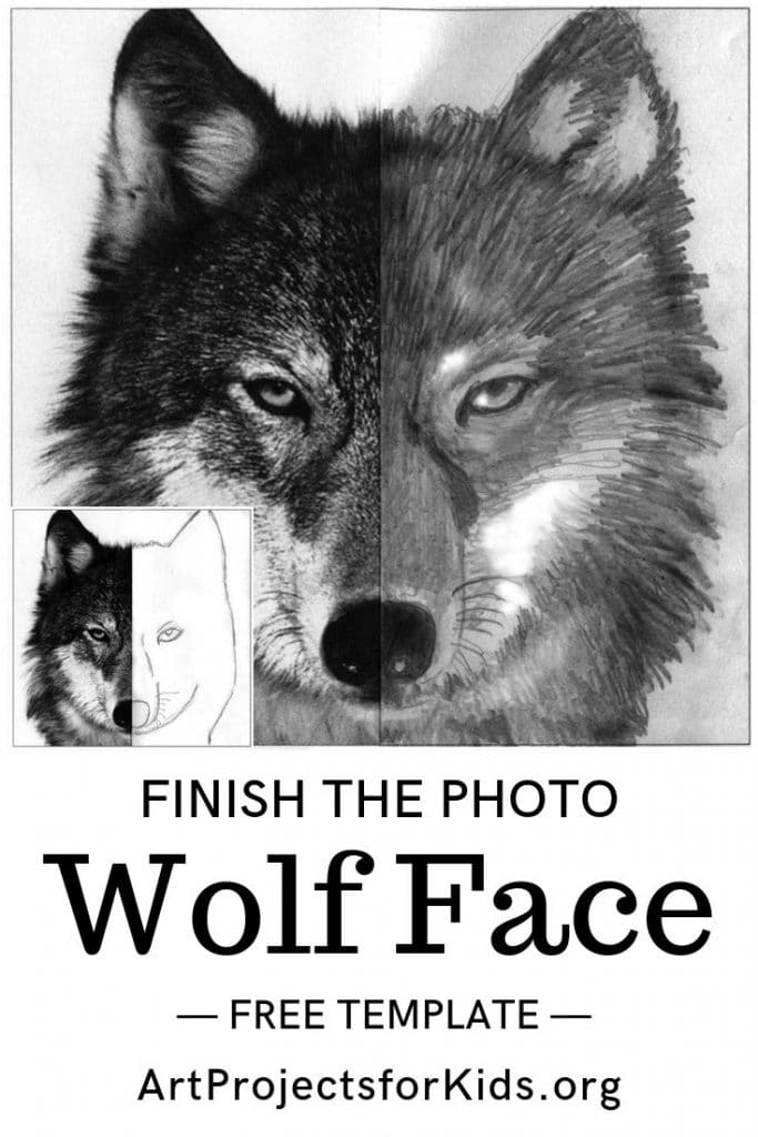 Draw a wolf face