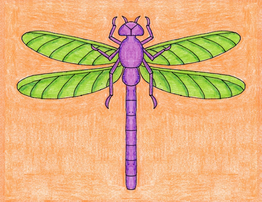 Draw Dragonfly 2 – Activity Craft Holidays, Kids, Tips